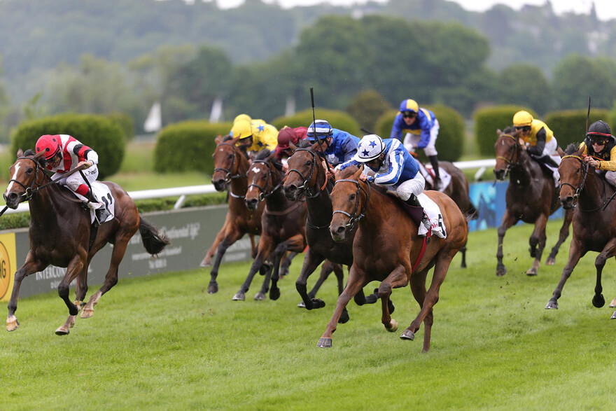 Horse racing live on tv
