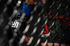 UFC 255: Deiveson Figueiredo Vs Alex Perez